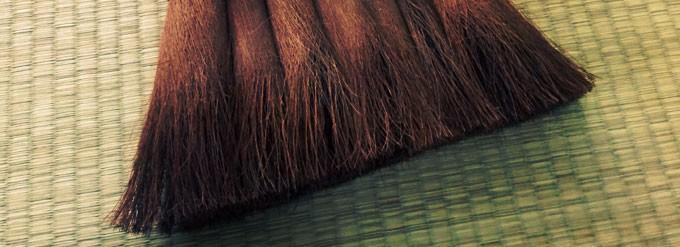 棕櫚ほうき