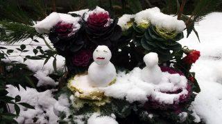 雪降る宝山寺とナイヤビンギのしばれる寒さ、聖と俗の狭間を体感できる地。