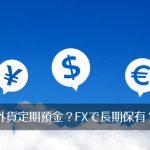 外貨定期預金かFXで長期保有か、「ドル」の扱いに悩む。率直にアドバイス、求む。