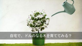 アイハーブを利用して、日本でドルを入手し、貯めていく方法。