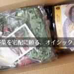 オイシックス(Oisix)のお試しセット(1,980円)がうまうま、ずぼら主婦の救世主かも!?
