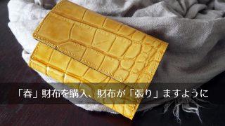春財布は縁起がいい?レザーのクロコダイル型押しフラップミニ財布を購入!3月12日は財布の日