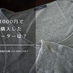 メルカリで古着の洋服を買ってみた、イエナのサマーセーターお値段1,000円なり