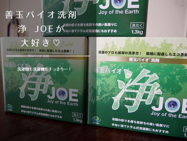 バイオ洗剤_浄_JOE