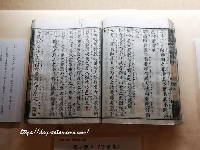 奈良県立万葉文化館「万葉集」を中心とした古代文化に関する総合文化施設