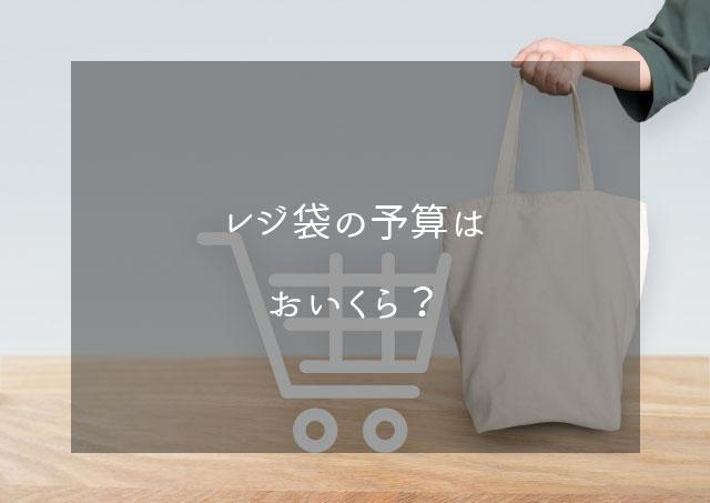 エコバッグに掛ける予算はいくら?1枚3円のレジ袋で考えた場合